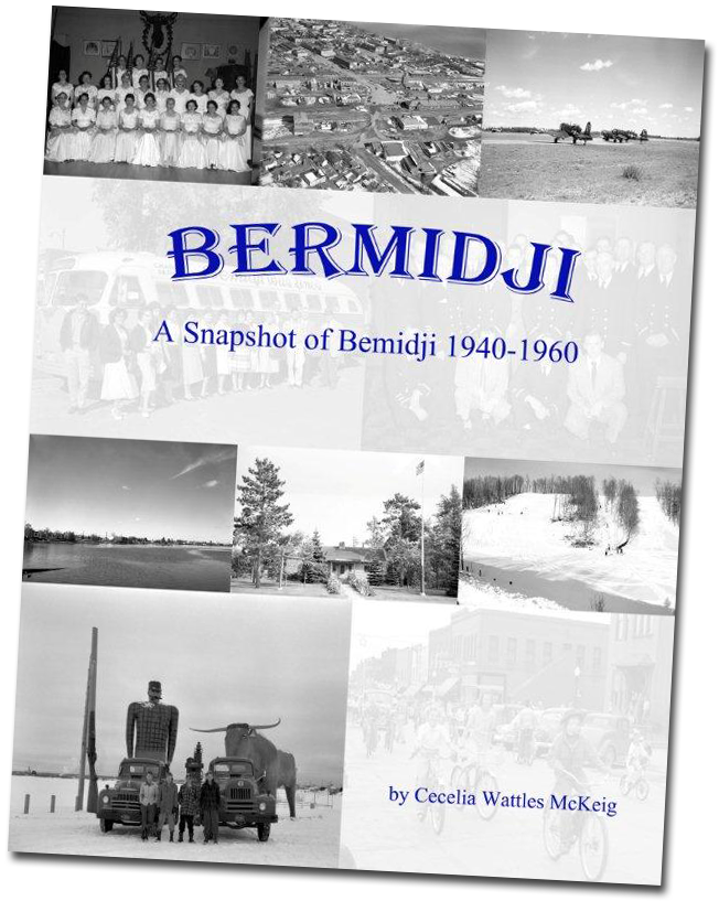 """Bermidji"" Book Cover"